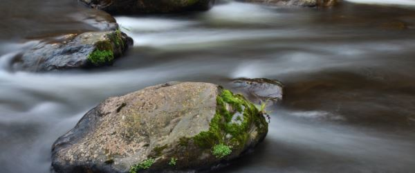 News Water flowing over rocks